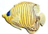 Golden Butterfly Fish, Custom Hand-Painted Magnets, Ornaments, Gifts, Decor