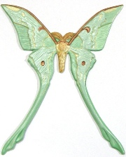 Luna Moth, Custom Hand-Painted Magnets, Ornaments, Gifts, Decor